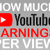 How Much YouTube Earnings Per View