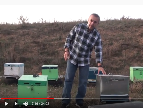 Προστασία κυψέλης νέο προϊόν: Beehive protection new product
