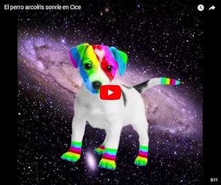video el perro arcoiris sonrie en CICE de Cristina