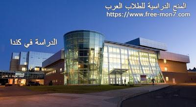 إدرس درجة البكالوريوس في كندا في جامعة Memorial of Newfoundland