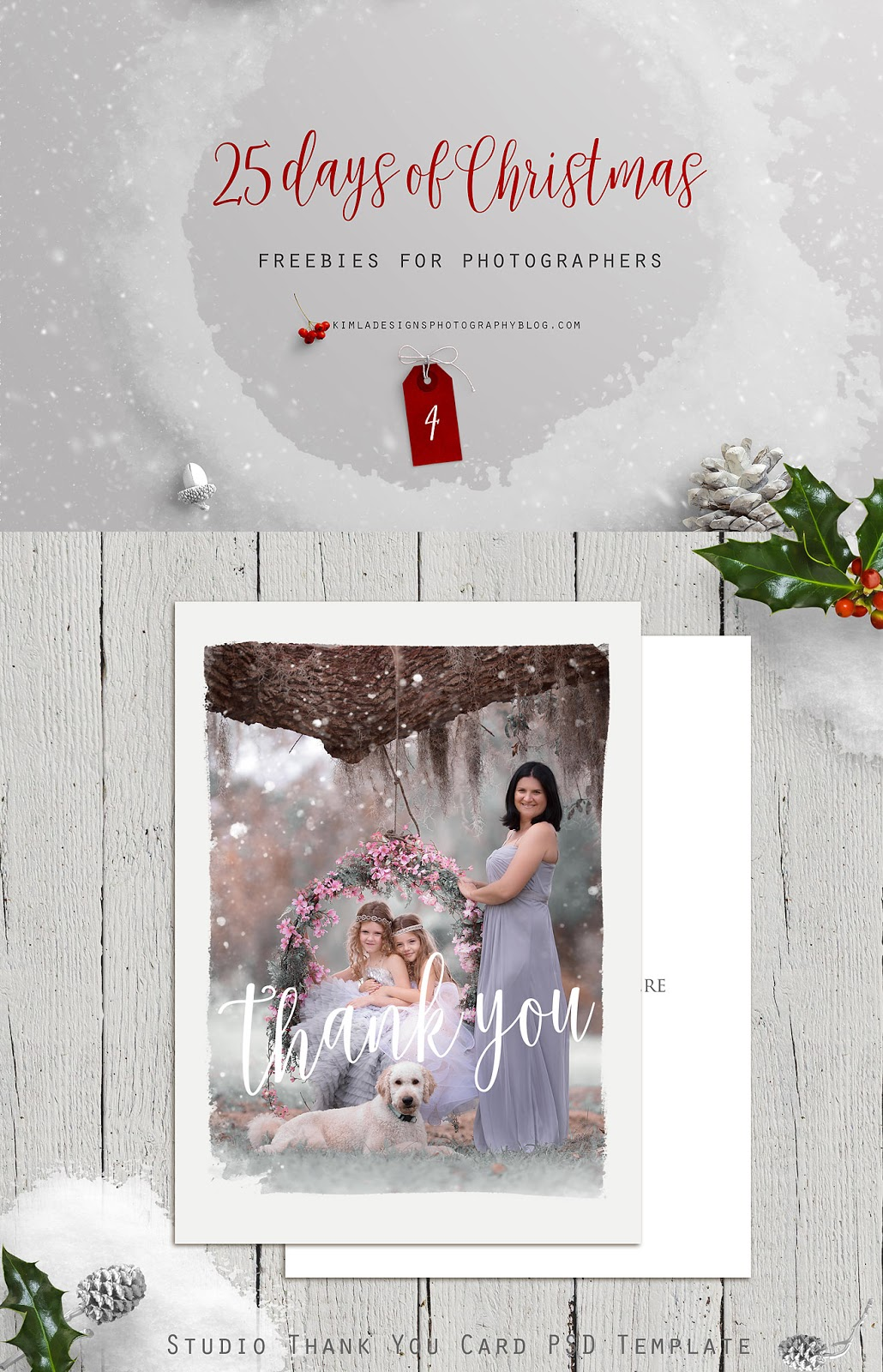 Day 4 of 25 Days of Christmas Freebies for Photographers