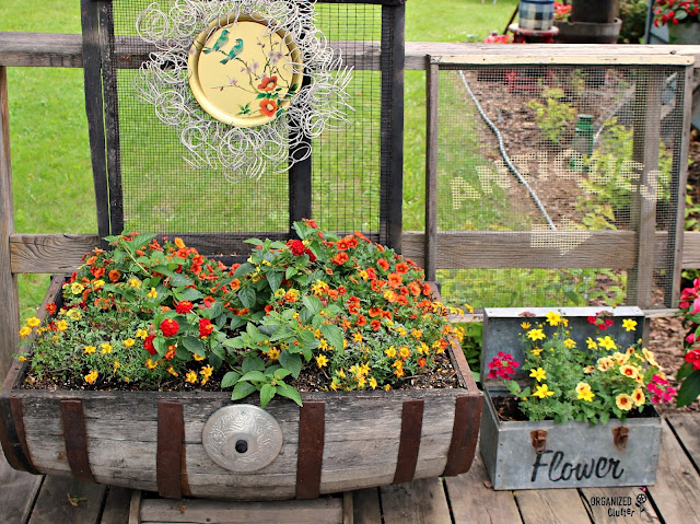 Planting a Wooden Horizontal Half Barrel with Annuals