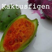 http://kolonihavelivet.blogspot.dk/2015/10/kaktusfigen-figenkaktus-opuntia-ficus.html