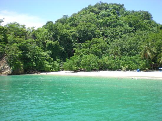 Informaci 243 N Sobre Costa Rica Isla Tortuga