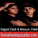 https://humaliwalaazadar.blogspot.com/2019/09/sajjad-zaidi-mesum-zaidi-nohay-2020.html