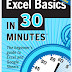 Excel Basics In 30 Minutes, 2nd Edition