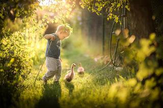 Kid duck across little river