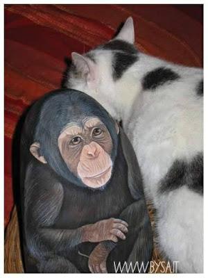 scimmie dipinte su sassi di mare  prezzi