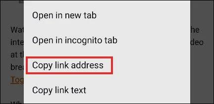 صورة Copy Link Address