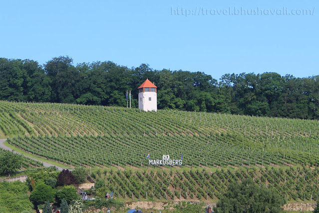 Day trip from Luxembourg - Vineyards of Schengen