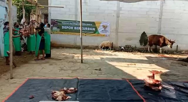 Baznas Kota Depok Salurkan 250 Paket Daging Kurban