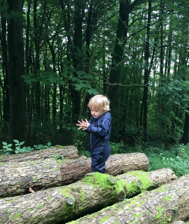 toddler-looking-at-his-open-hands-and-standing-on-a-log-pile