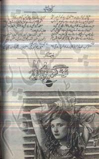Sheesha Gar Se Poocha Jaye by Naeema Naz Online Reading