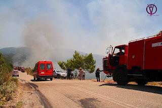 Ποινές σε αγρότες σε περίπτωση πυρκαγίας