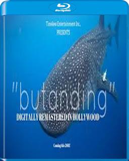 Butanding (2016)