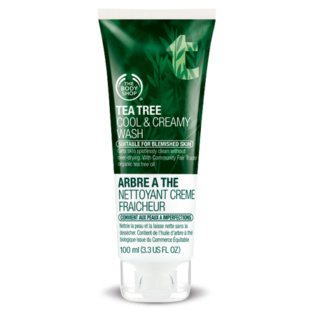 Body Shop review products Tea Tree Cool & Creamy Wash