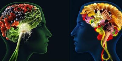 Alimentación y neuronas