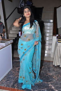 BLUE COLOUR SAREE