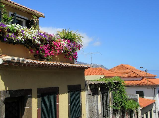beautiful balcony with many flowers