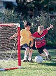 Homemade Sports Goal