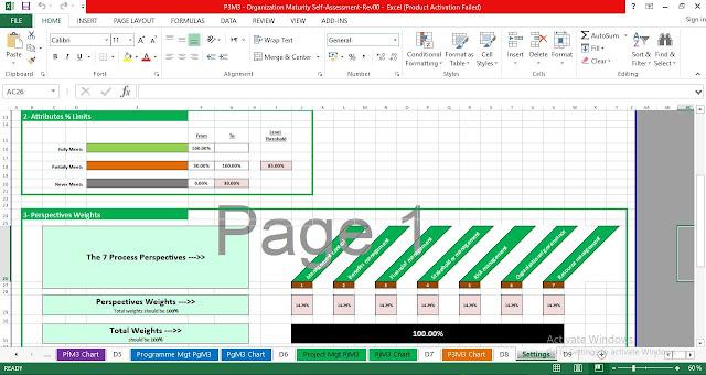 Organization Maturity Report