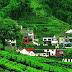 Sơn La: Những địa điểm du lịch không thể bỏ qua khi đến Sơn La