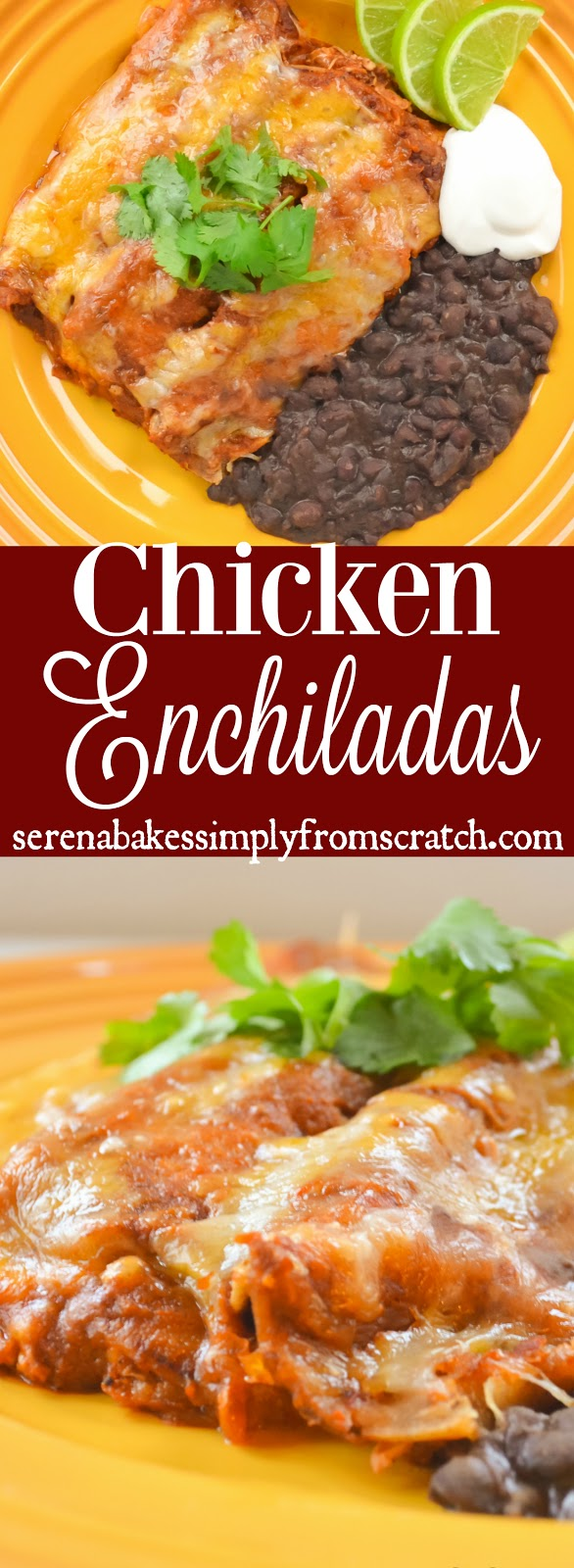 The BEST Homemade Chicken Enchiladas from scratch! serenabakessimplyfromscratch.com