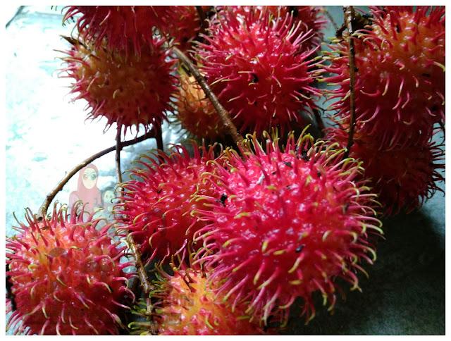 Banyaknya manfaat si buah rambutan.