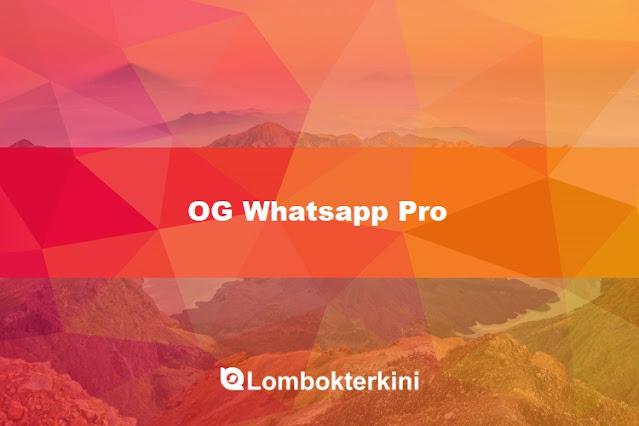 Download OG Whatsapp Pro Apk 2021