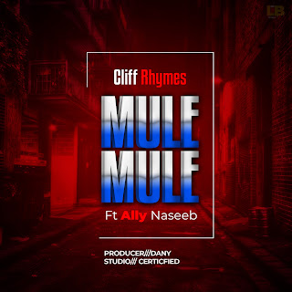 Download Mp3 Audio | Cliff Rhymes Ft Ally Naseeb - Mule Mule