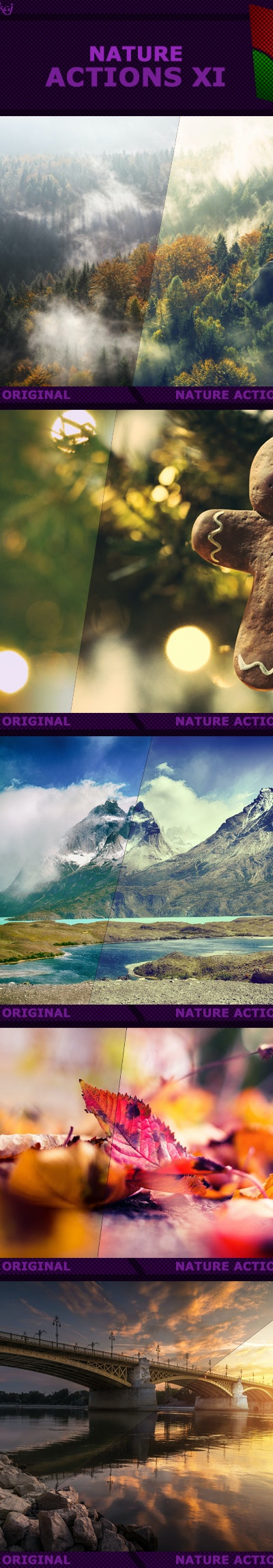 Nature%2Bactions%2BXI