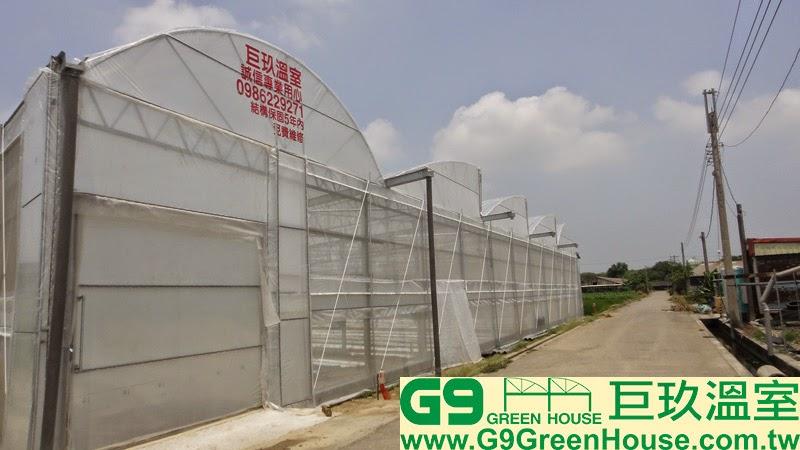 37.圓鋸鋼骨加強型溫室結構風頭防風桿安裝完成外觀