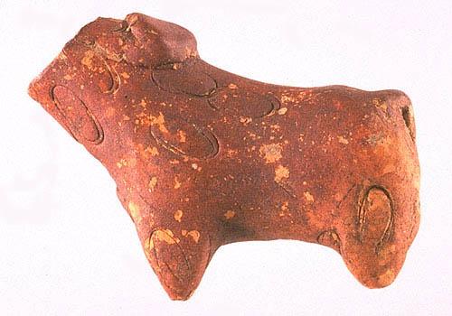 Image result for zebu ingot shape bharatkalyan97