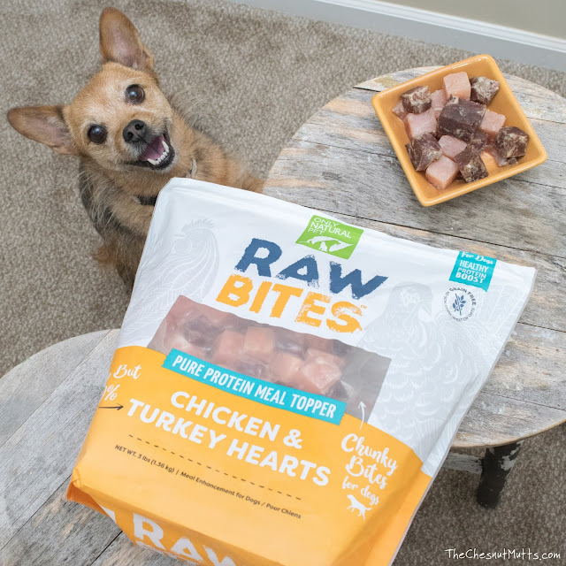 Mini Review: Only Natural Pet Raw Bites Dog Food Topper