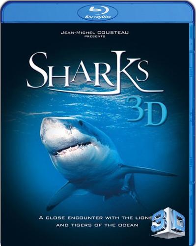 IMAX: Sharks 3D [BD25] [3D] [2004] [Latino]
