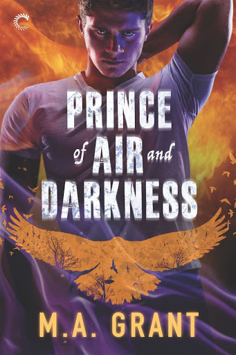 Prince of air and darkness   The darkest court #1   M.A. Grant