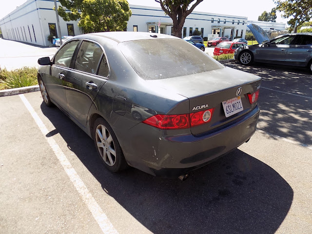 Delaminating paint on Acura TSX before overall paint job at Almost Everything Auto Body.