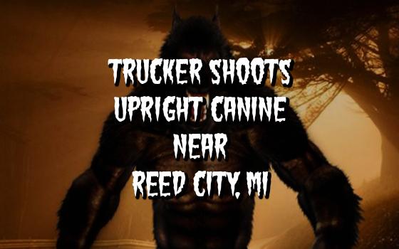 Trucker Shoots Upright Canine Near Reed City, MI