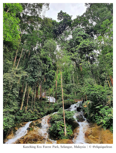 Kanching Eco Forest Park Selangor Malaysia - Ramble and Wander