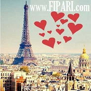fi paris سائق في باريس خدمات السياحة وتأجير السيارات الإستقبال والمساعدة في مطارات پاريس
