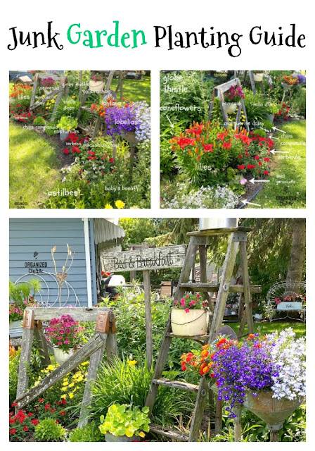 My Late June Flower Junk Garden Border With Planting Guide #junkgarden #flowergardening #annuals #perennials #plantingguide #flowerborder #gardendecor #farmhousegarden