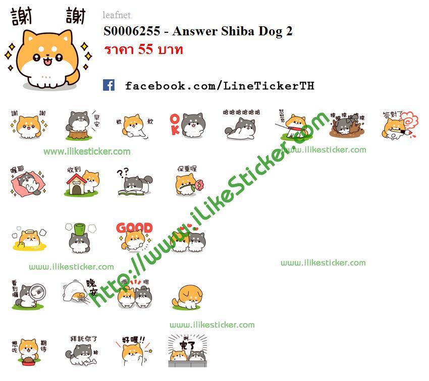 Answer Shiba Dog 2
