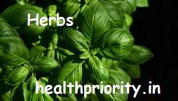 20 Herbs With Great Health And Medicinal Benefits