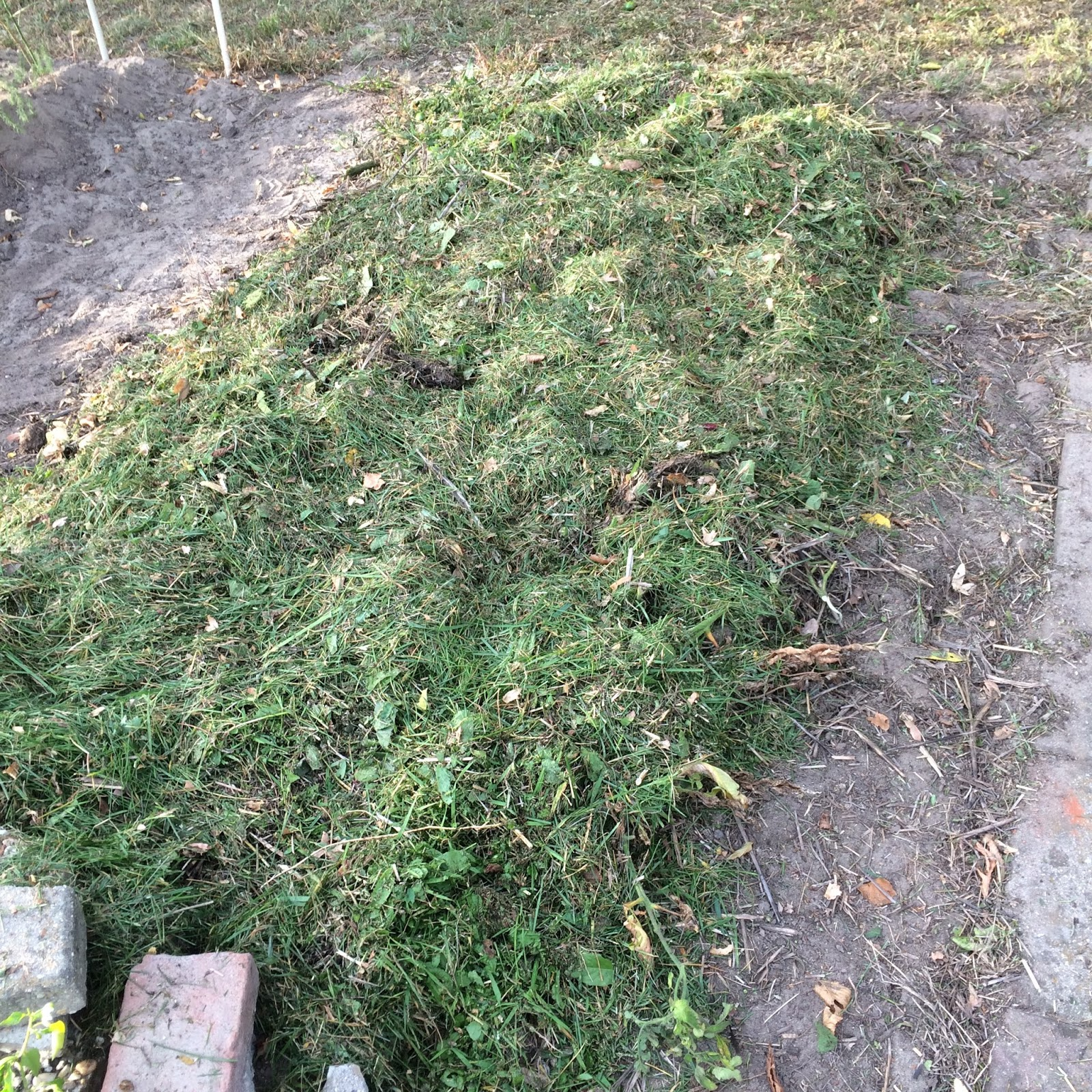 moestuin herfst najaar volkstuin zon mulch permacultuur