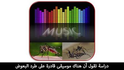 دراسة تقول أن هناك موسيقى قادرة على طرد البعوض