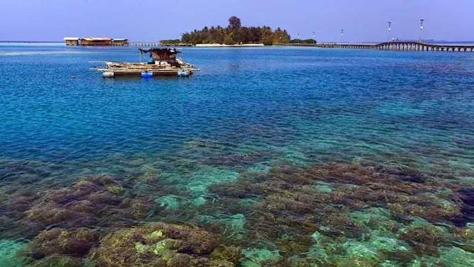 Bingung Pilih Pulau? Yuk, Simak Kelebihan Yang Dimiliki Masing-Masing Pulau di Kepulauan Seribu!
