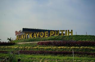 Info Lokasi & Harga Tiket Masuk Bukit Kayoe Putih Mojokerto