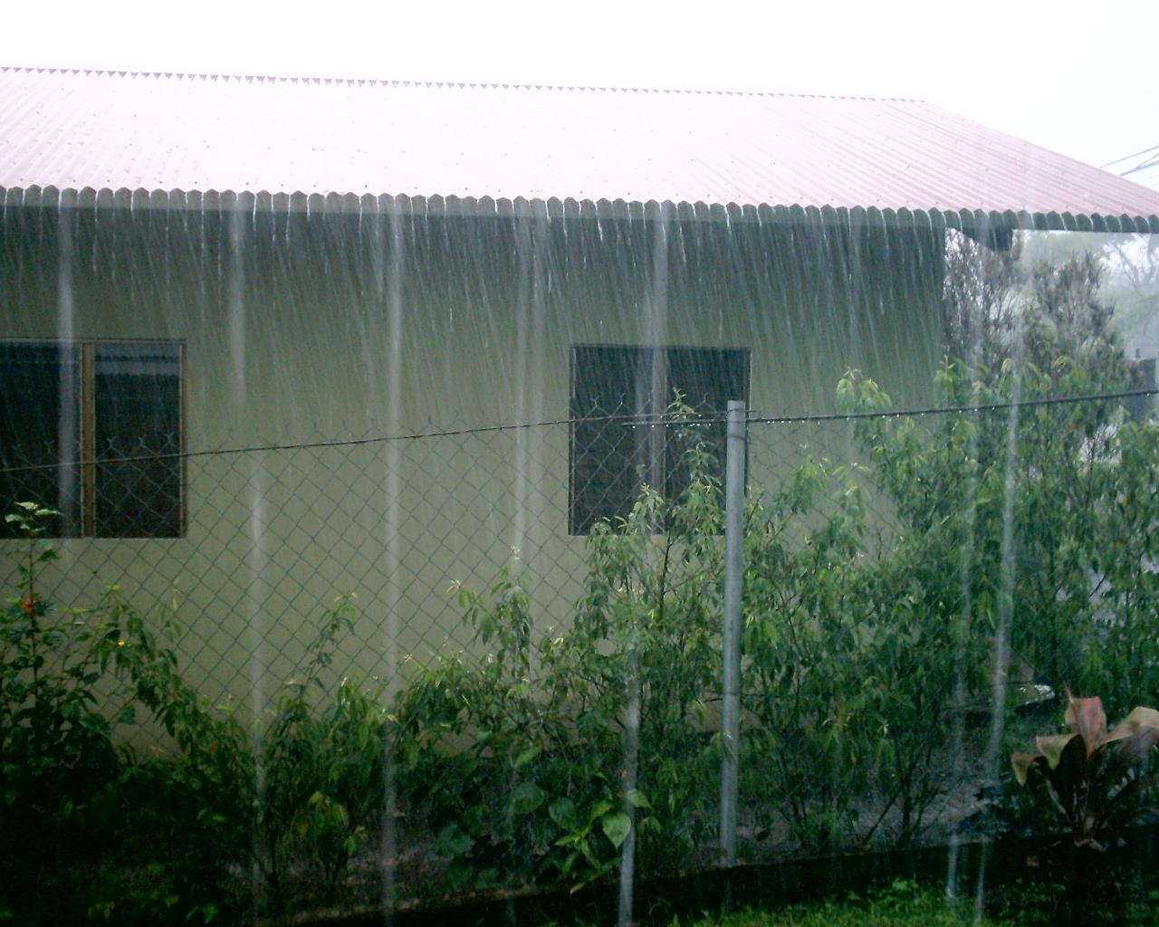 Panama Prattle Raining Bathtubs And Garbage