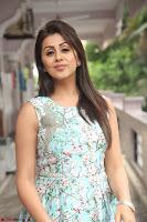 Nikki Galrani at Prema leela pelli gola trailer Launch ~  Exclusive 124.JPG