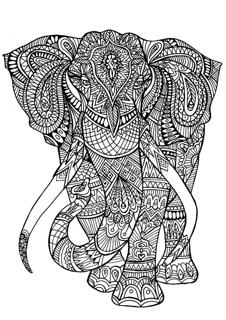 Pintando Elefantes La Popular
